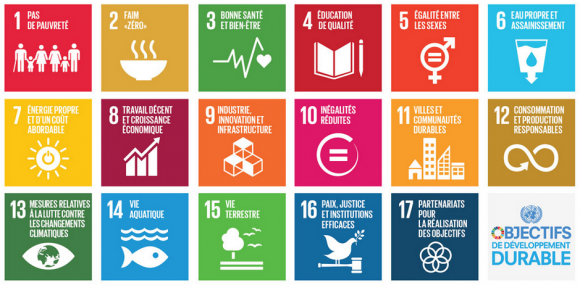 ODD: Agenda 2030 : 17 objectifs, 3 engagements... - Maria Portugal-World View