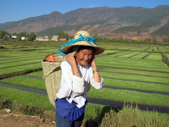Agriculture in China: The industrial mirage... - www.mariaportugal.net